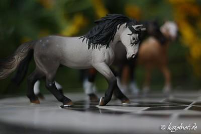 Pferdemodell auf Mosaiktisch - Blende 1.8