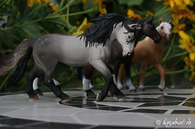 Pferdemodell auf Mosaiktisch - Blende 10