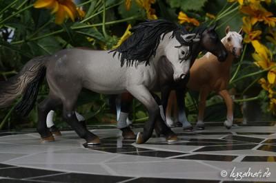 Pferdemodell auf Mosaiktisch - Blende 22