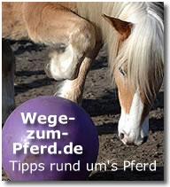 www.wege-zum-pferd.de