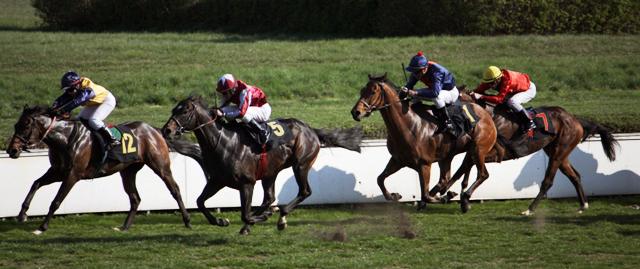 4. Rennen über 1.600m - El Aguilo vor Gauner Danon, dahinter Super Hector und Samcible