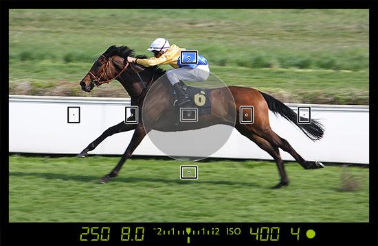Selektivmessung auf der Rennbahn wenige Sekunden später - dieses Bild ist deutlich heller als das erste