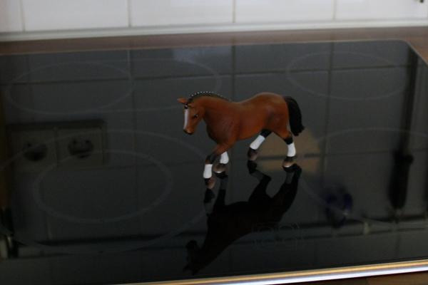 Originalbild des Modellpferdes