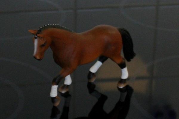 Das Pferd als Hauptmotiv. Das Bild ist deutlich zu dunkel.