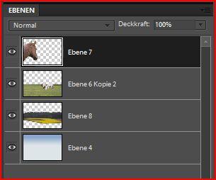 Anzeige verschiedener Ebenen in Photoshop Elements